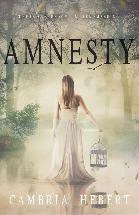 EBOOK-Amnesty
